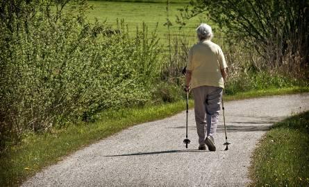13. emerytura 2020. Kto dostanie trzynastkę dla emerytów?