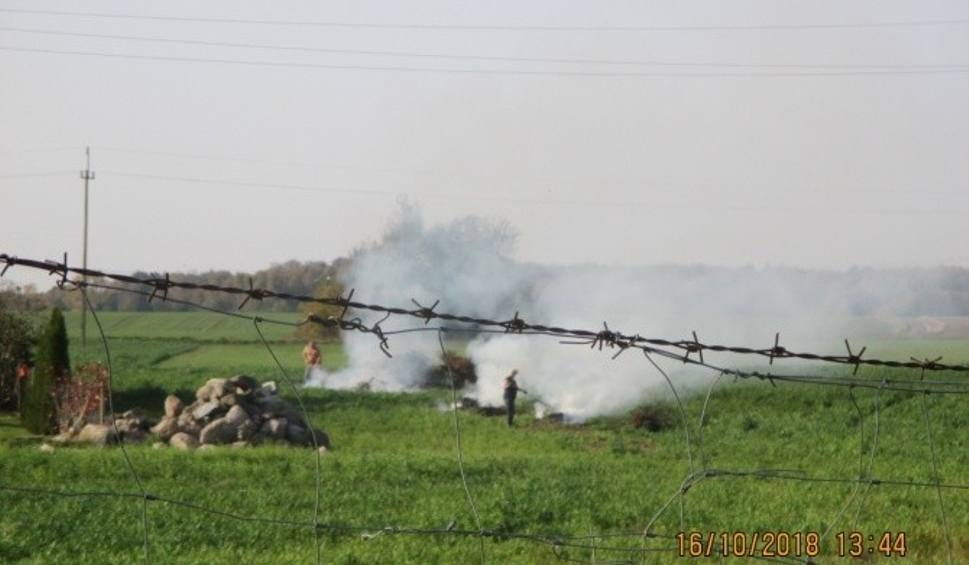 Film do artykułu: Mandat 500 zł za spalanie liści dla mieszkańca Malechowa