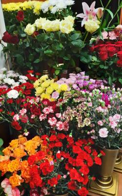 - Te i wiele innych kwiatów trafi na śmietnik najdalej w poniedziałek - mówi Dawid Karwacki z bydgoskiej Kwiaciarni Dalia. Straty liczy w tysiącach