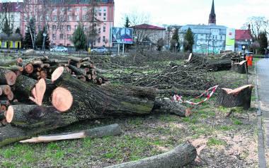 Przykry krajobraz po wycince drzew na działce przy granicy polsko-niemieckiej w Gubinie