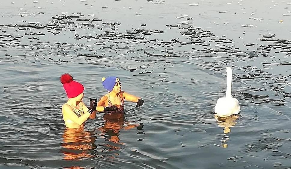 Film do artykułu: Morsowanie w jeziorze Głębokie koło Międzyrzecza z atrakcjami. Na śmiałków czekał lód i łabędzie [ZDJĘCIA]