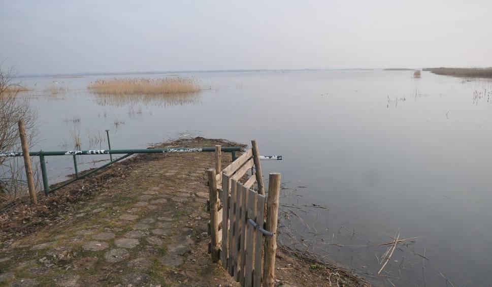Film do artykułu: Park Narodowy Ujście Warty pod wodą. To raj dla ptaków [WIDEO, ZDJĘCIA]