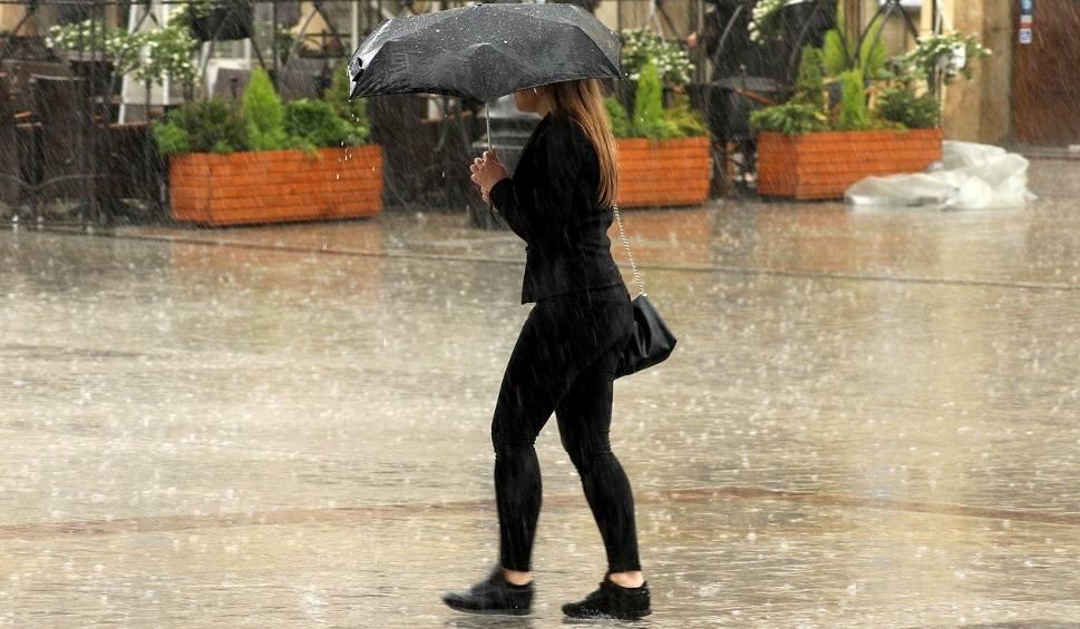 Film do artykułu: Pogoda na poniedziałek, 24 września: wieje, pada, ślisko, brak prądu, powalone drzewa na ulicach WIDEO + ZDJĘCIA