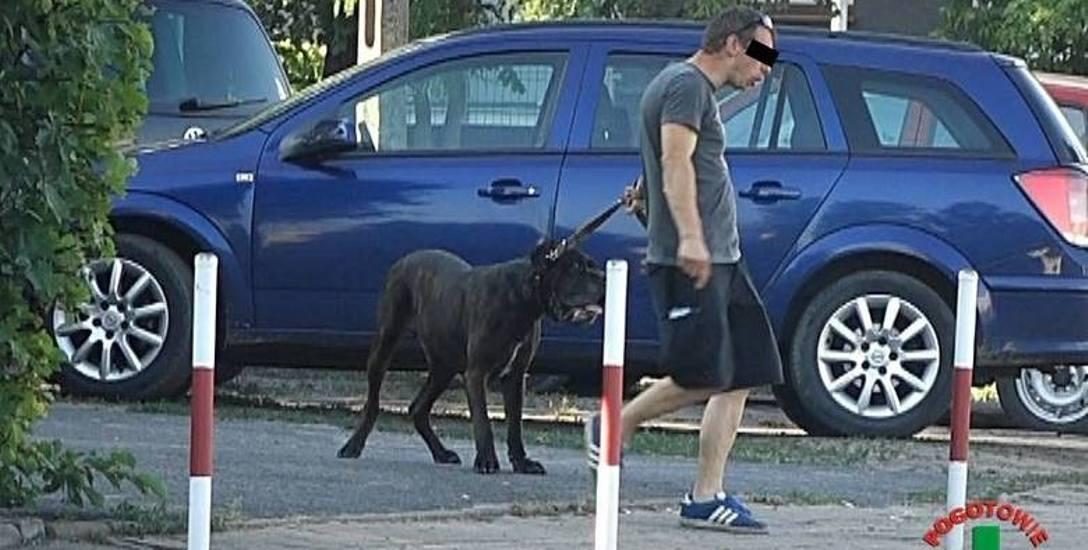 Mężczyzna został przez nas przesłuchany w sprawie znęcania się nad psem. Czekamy na ekspertyzy biegłego w tej dziedzinie, które mają wyjaśnić, czy doszło