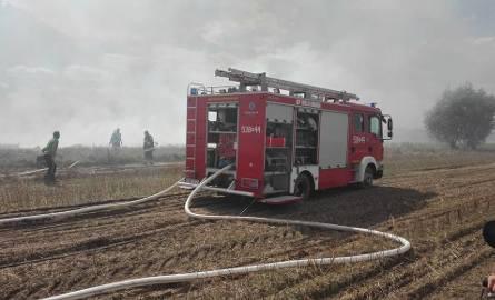W Wielkim Komórsku pracę strażakom ułatwił rolnik, który zachował się wzorowo. Zaorał pas ochraniający resztę pola od zaognionego terenu. Ocalił tym