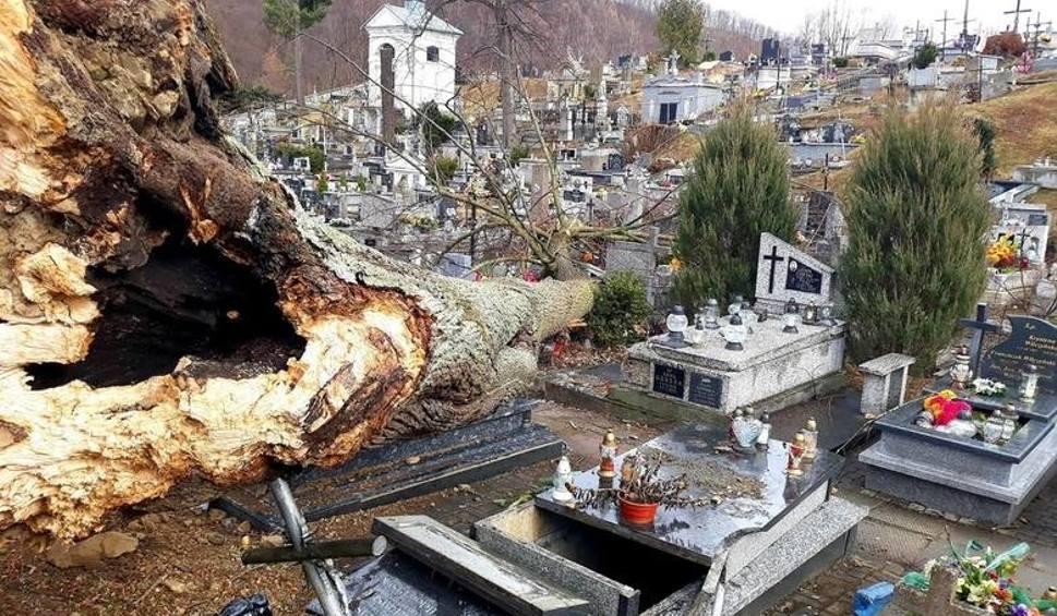 Film do artykułu: Małopolska. Wiatr siał spustoszenie, zerwane dachy, są ranni. [ZDJĘCIA, JAK OTRZYMAĆ POMOC?]