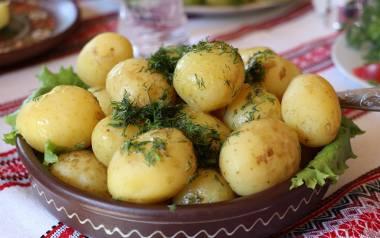 Młode ziemniaki mają niewielki rozmiar i cieniutką skórkę, są delikatniejsze i słodsze w smaku od późniejszych ziemniaków. Gotując je krótko i na małym