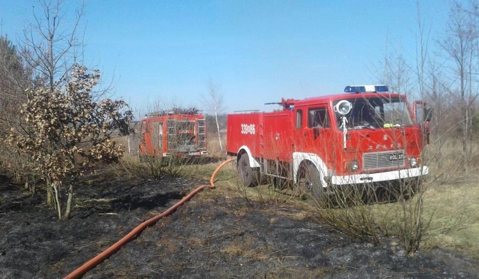 Film do artykułu: Rekordowa ilość pożarów traw i nieużytków w Radomiu i powiecie radomskim