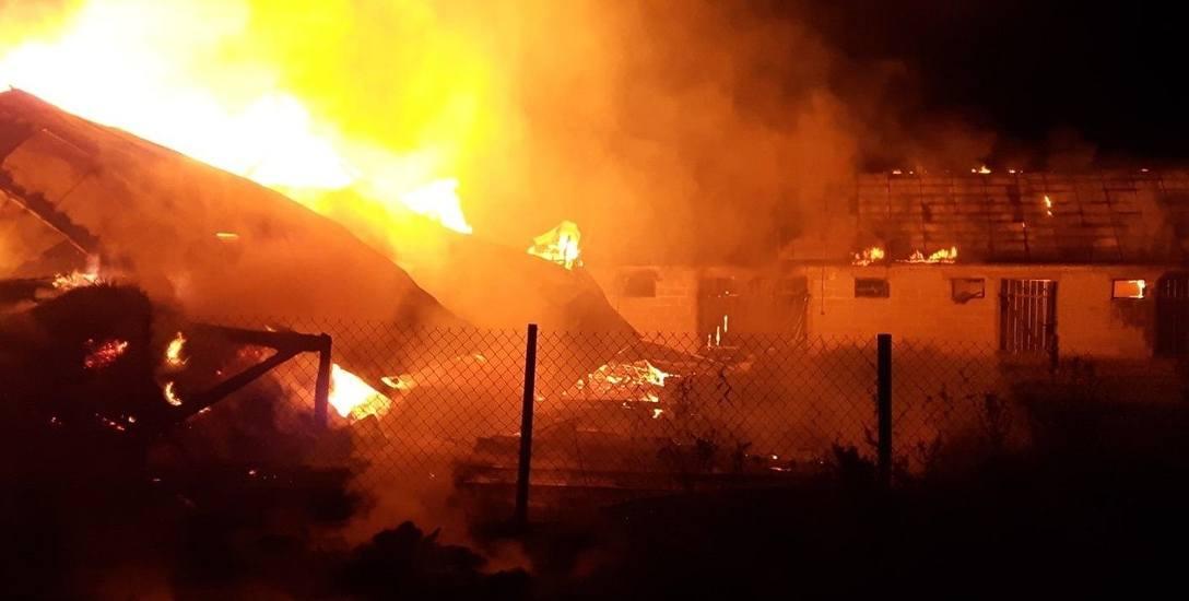 Powiat ostrowski. Podpalacz grasuje w Kosewie. Od 30 kwietnia było 5 pożarów