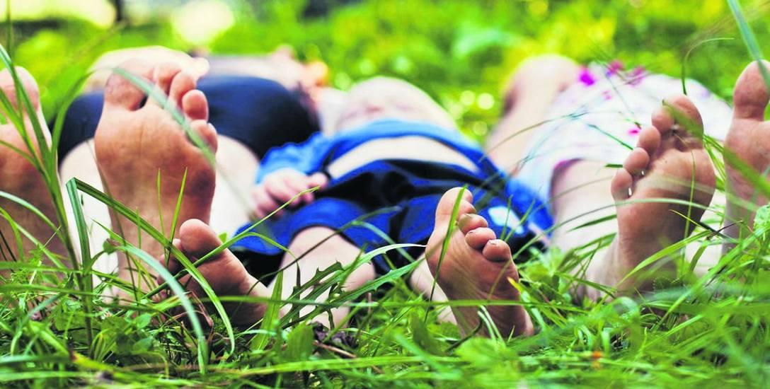 Po śmierci działkowca działkę może przejąć jego współmałżonek, dzieci, wnuki