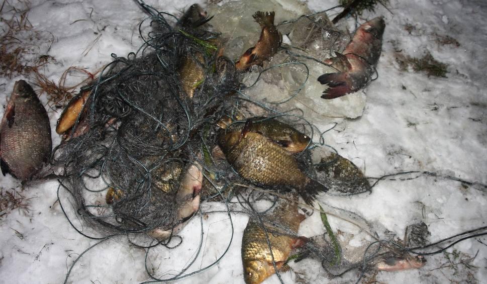 Różan. Awantura o skłusowane ryby: kto ma rację?