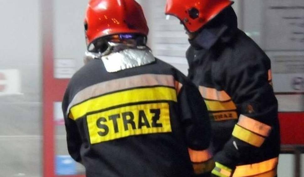 Film do artykułu: Dwójka dzieci ucierpiała w pożarze nieużytków w Płotach
