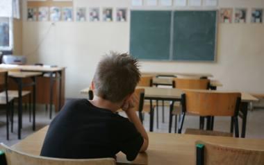 Tegoroczny wzrost urodzeń odbije się na szkołach dopiero za siedem lat. W tym czasie sporo szkół może zniknąć z mapy edukacyjnej
