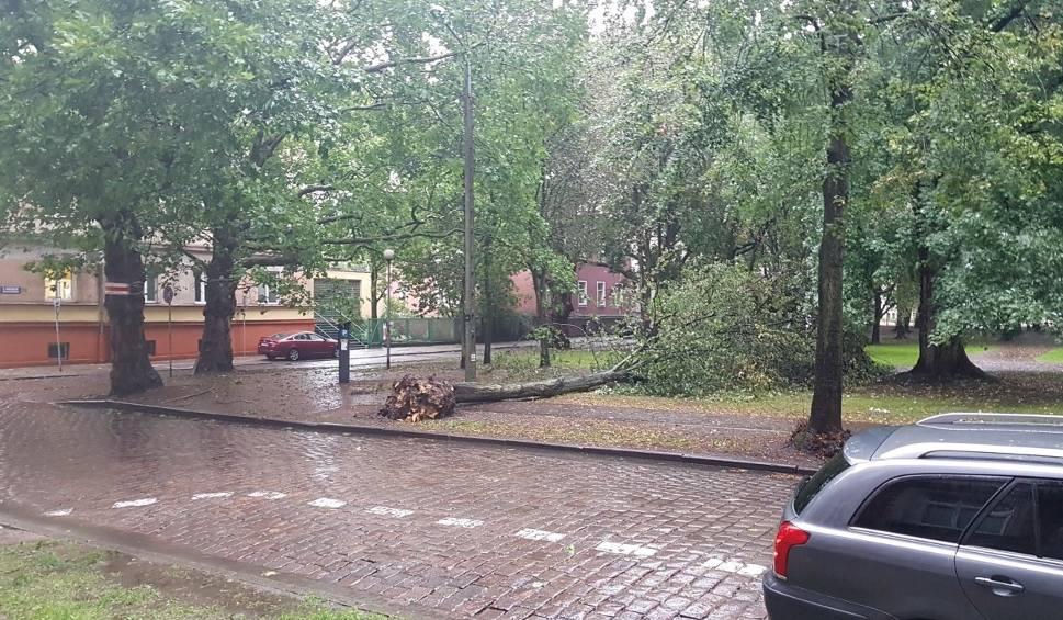 Film do artykułu: Silny wiatr i opady deszczu w Słupsku oraz regionie [zdjęcia]