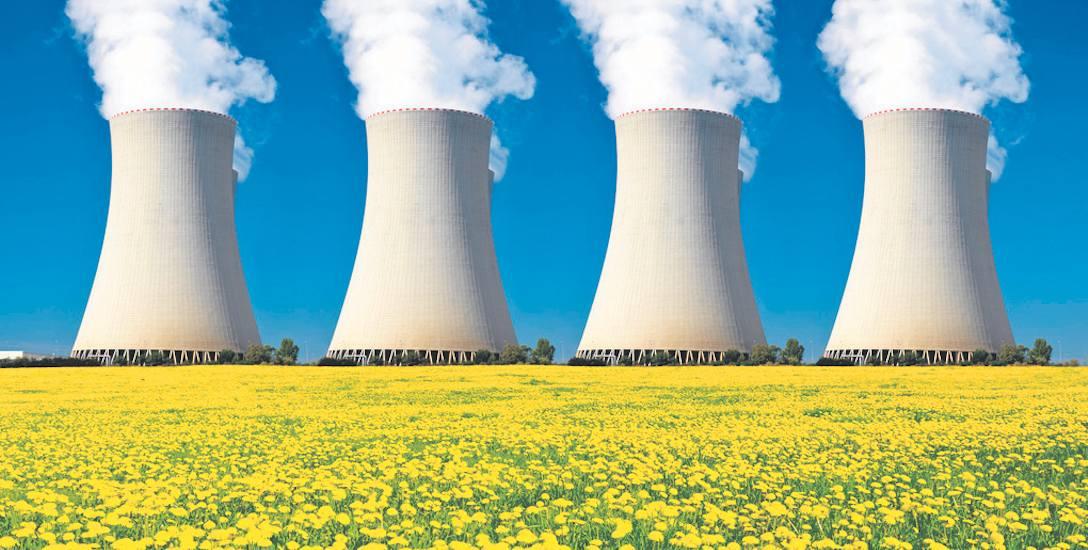 Najpierw reaktory jądrowe dla przemysłu i naukowców