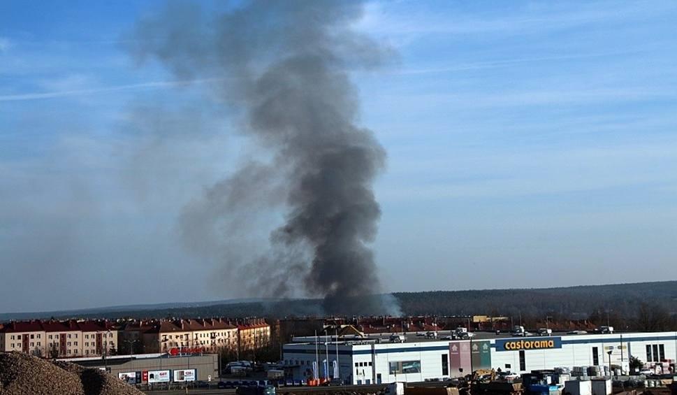 Film do artykułu: Słup ciemnego dymu nad Skarżyskiem. Spłonęły hektary trawy [ZDJĘCIA]