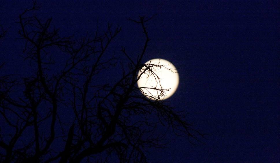 Blue Moon 2018 czyli pełnia niebieskiego Księżyca pojawi się na niebie już w Wielką Sobotę (31.03.2018)