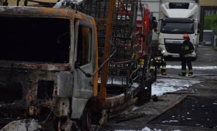 Pożar w Żywcu spowodował straty mogące sięgać kilkuset tysięcy złotych