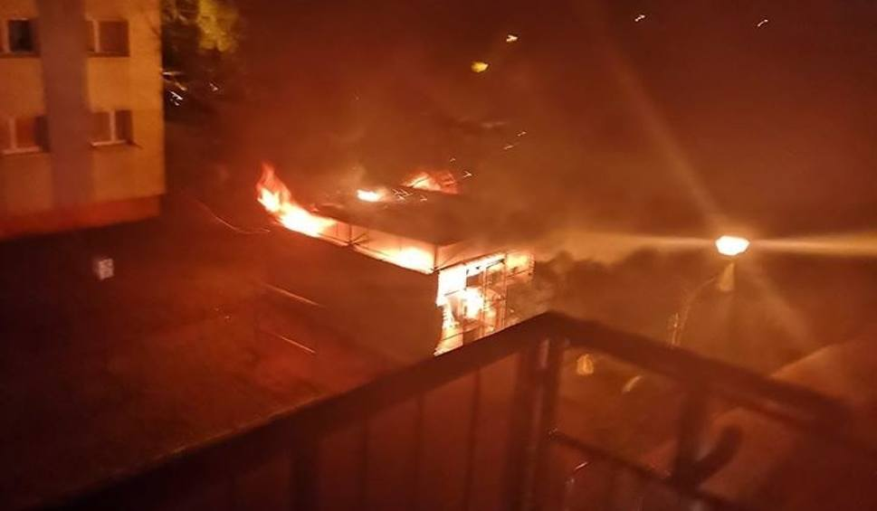 Film do artykułu: Pożar śmietnika na ul. Szarych Szeregów w Bydgoszczy [zdjęcia]