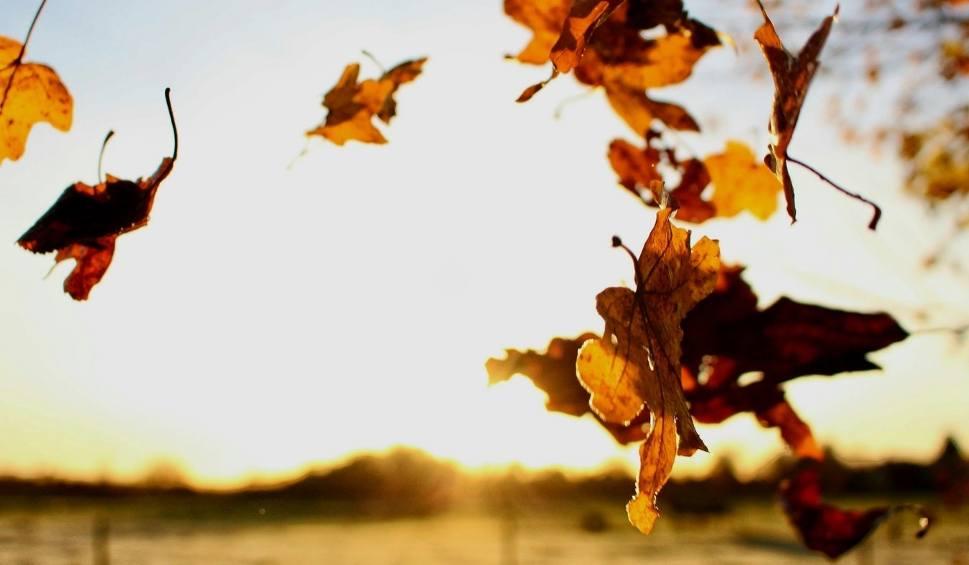 Film do artykułu: Jaka będzie pogoda w sobotę, 17 listopada 2018 (17.11.2018)? Czeka nas w miarę pogodny weekend [prognoza pogody]