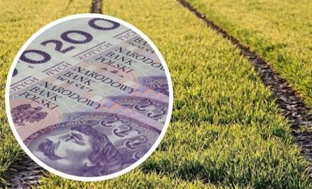 Płatności bezpośrednie w 2018 roku. Ile trafiło na konta gospodarzy? Do kiedy będą wypłacane pieniądze?