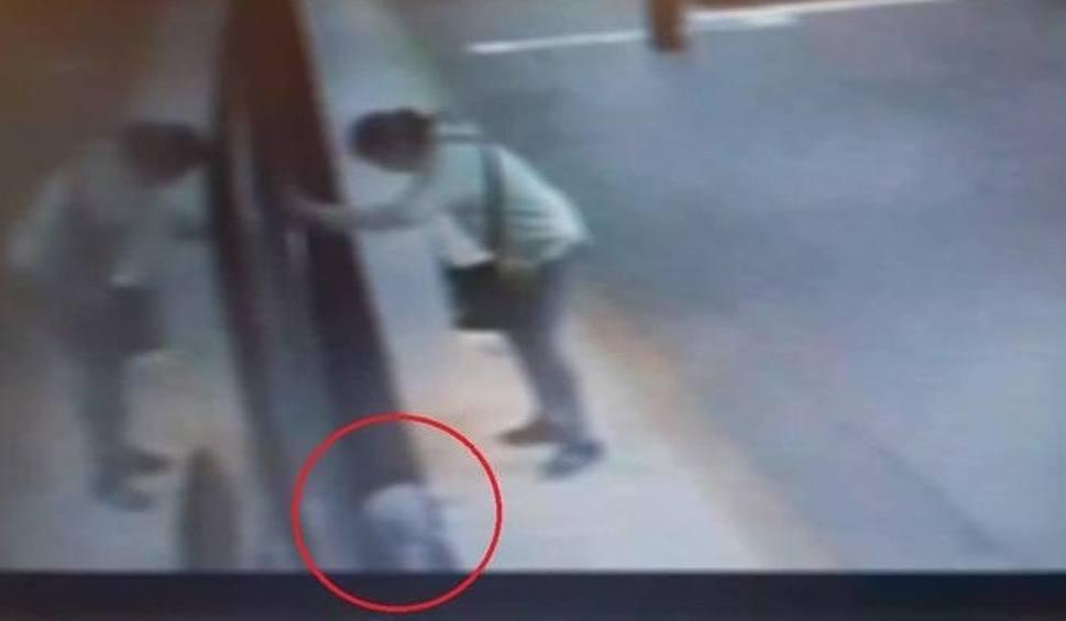 Film do artykułu: Dziecko wpadło pod pociąg z peronu. Matka przed sądem w Częstochowie. Obrońca żąda uniewinnienia