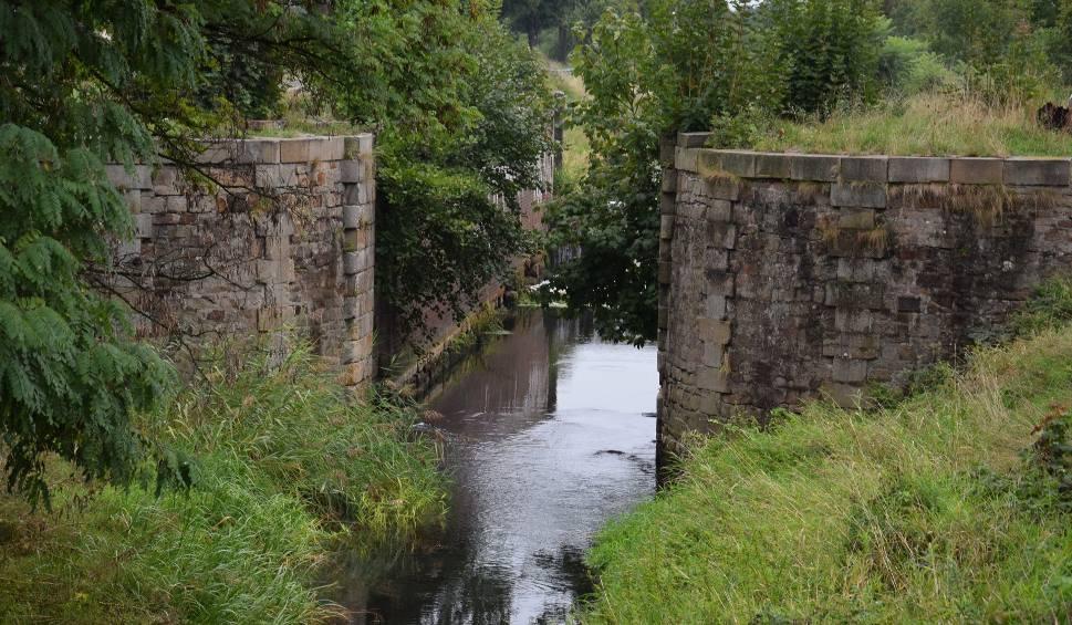 Film do artykułu: Jest pomysł ratowania Kanału Kłodnickiego. Jeden z najstarszych kanałów w Europie znika na naszych oczach