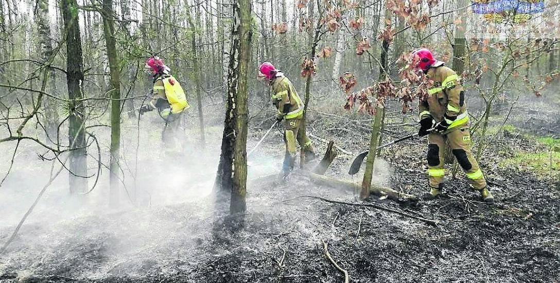 Dziesiątki pożarów, a wszystko przez wypalanie traw