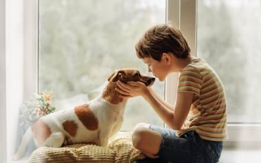 Rasy psów dla rodzin z dziećmi  Rasy psów dla rodzin  Rasy psów dla dzieci