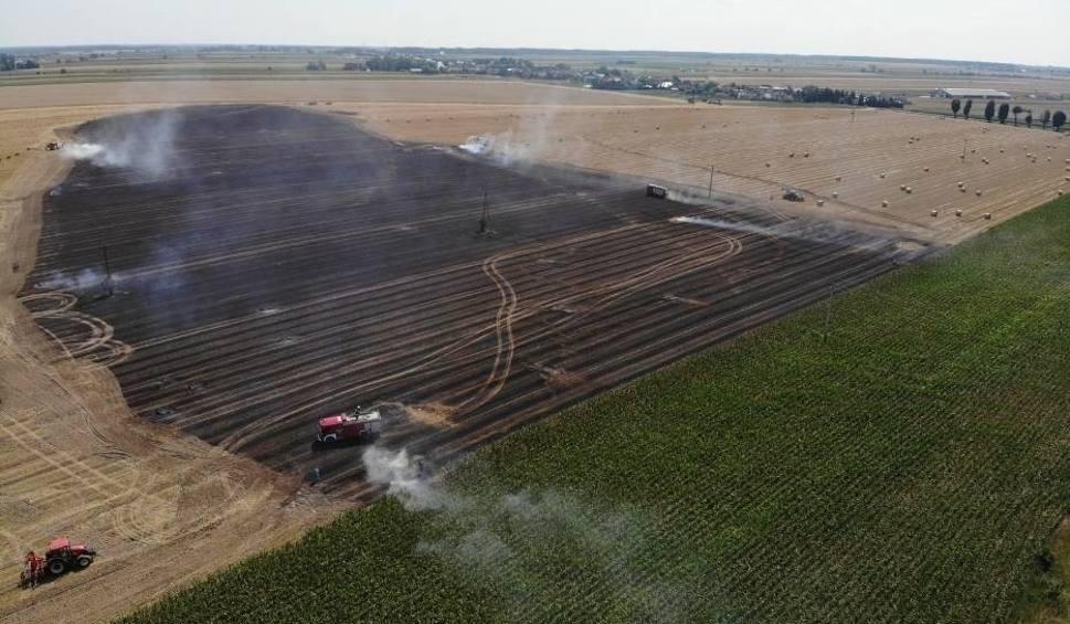 Film do artykułu: Moraczewo: Pożar pola niedaleko Leszna - skalę żywiołu najlepiej pokazują zdjęcia i wideo z lotu ptaka