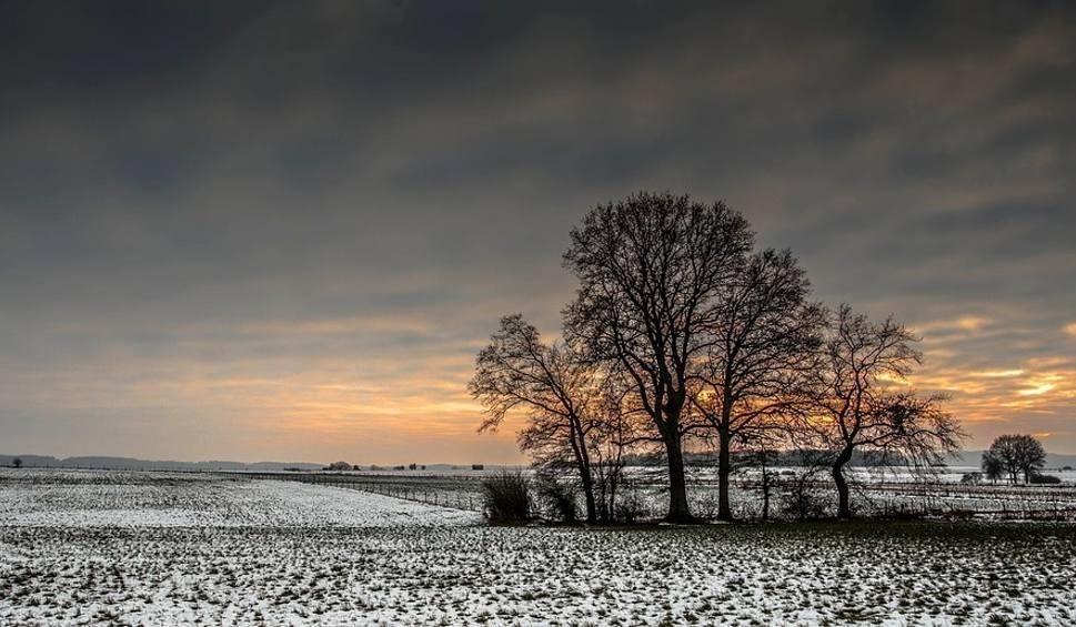 Film do artykułu: Pogoda w woj. lubelskim. Wraca zimowa aura. Możliwe opady śniegu. Sprawdź prognozę