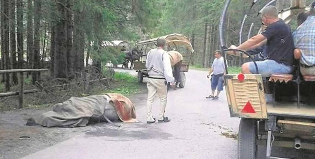 Koń Jukon padł w sierpniu 2014 roku na oczach turystów zmierzających do Morskiego Oka