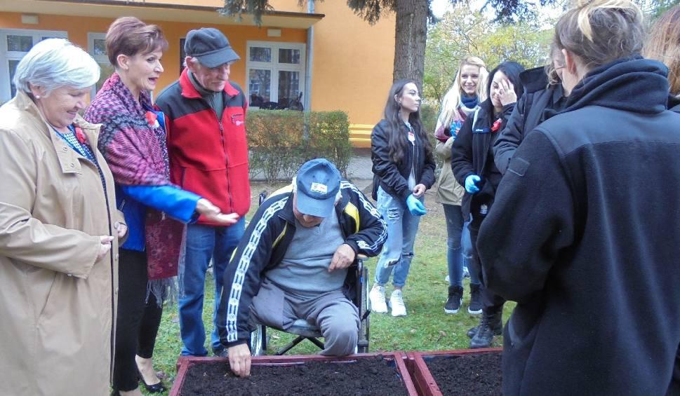 Film do artykułu: Wspólnie posadzili sto roślin cebulkowych w Tarnobrzegu [ZDJĘCIA]
