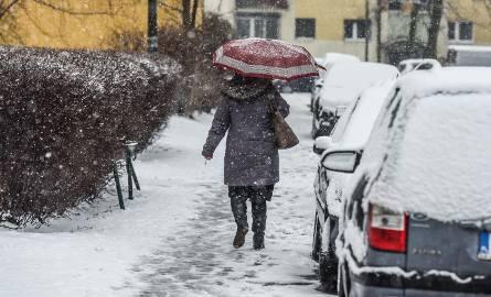 Synoptycy z Meteo France przewidują jaka będzie zima 2018/2019. Śnieg może spaść w Polsce jeszcze w październiku. Zima ma być długa i bardzo mroźna!Czytaj