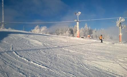 Szerokie stoki Łysej Góry świetnie nadają się na wypady na narty całymi rodzinami.