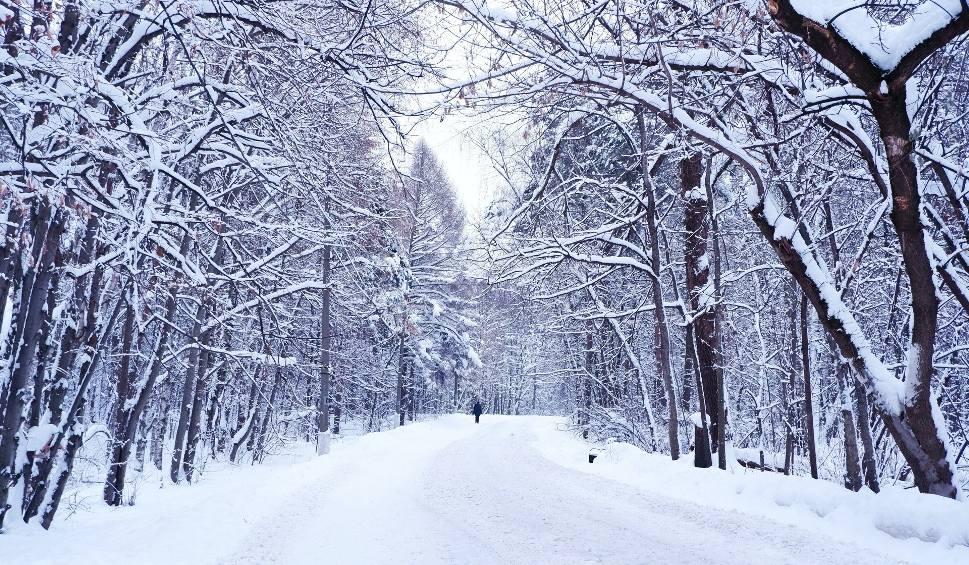 Film do artykułu: Taka będzie pogoda zimą 2021. Długoterminowa prognoza pogody. Czy możemy spodziewać się srogich mrozów i opadów śniegu w styczniu i lutym?