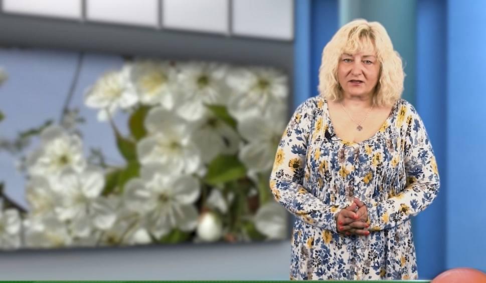 Film do artykułu: Agro Pomorska odcinek 64. Rzepak, Porozumienie Rolnicze i sytuacja w pasiekach [wideo]