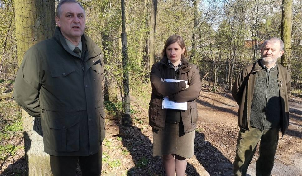 """Film do artykułu: Tony śmieci zalewają teren rezerwatu """"Pionki"""". Zebrano ponad 420 worków śmieci"""