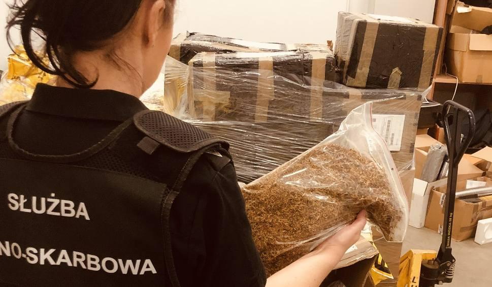 Film do artykułu: Coraz więcej nielegalnego tytoniu w przesyłkach kurierskich. W tym roku zabezpieczono już łącznie ponad 1,6 tony tytoniu