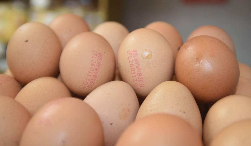 Film do artykułu: Skażone jaja trafiły do sklepów Biedronka i Carrefour. Nie wolno ich jeść. Jajka muszą być zwrócone do sklepu OSTRZEŻENIE