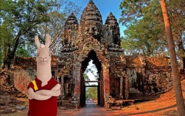 Lama ze Szczecina zaginęła w Kambodży. Nowy felieton MM Trendy