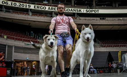 """Po raz pierwszy w historii Ergo Areny obiekt odwiedzili czworonożni goście.  """"Dzień Psa"""" to impreza o charakterze festiwalu, w ramach którego można było"""