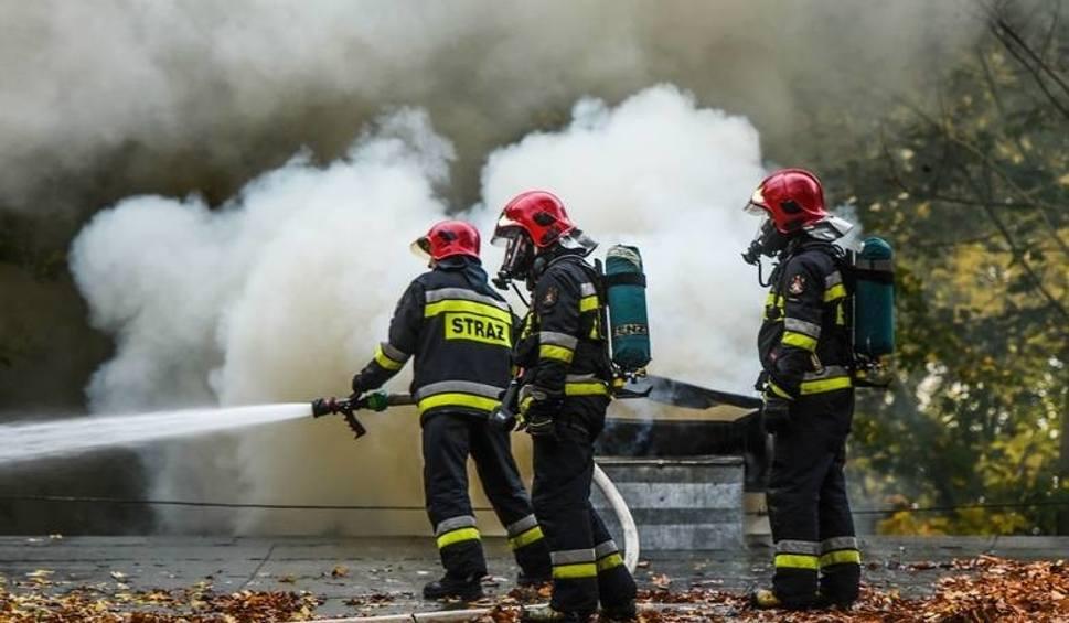 Film do artykułu: Pożary lasów: wiemy, ile ich już w tym roku wybuchło i jak duże są straty