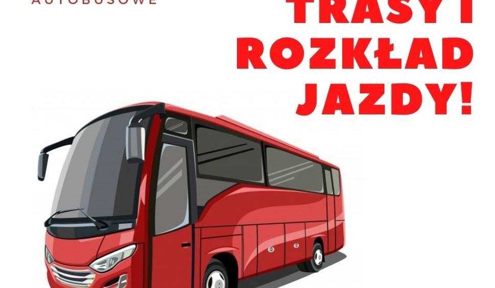 Film do artykułu: Od poniedziałku nowe linie autobusowe w powiecie ostrowieckim. Którędy poprowadzą? [DOKŁADNY ROZKŁAD JAZDY]