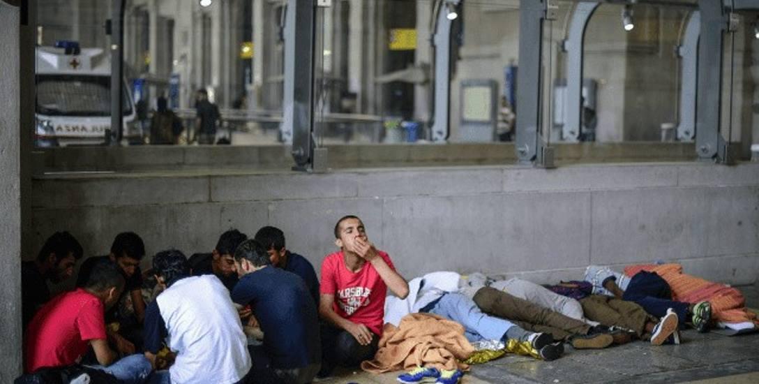 Nielegalni imigranci na ulicach Mediolanu