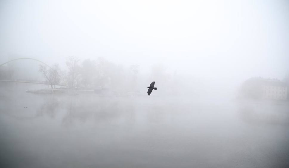 Film do artykułu: Uwaga! Gęsta mgła w nocy z czwartku na piątek [OSTRZEŻENIE]