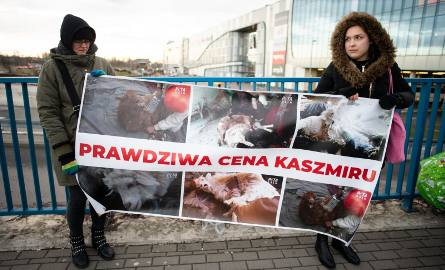 Protesty aktywistów z Fundacji VIVA odbyły się, m.in. 19 lutego w Poznaniu. Dziś, 22 lutego odbędzie się protest przed Galerią Pomorską w Bydgoszczy