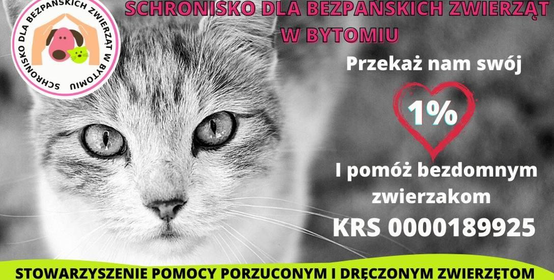 Stowarzyszenie Pomocy Porzuconym i Dręczonym Zwierzętom w Bytomiu