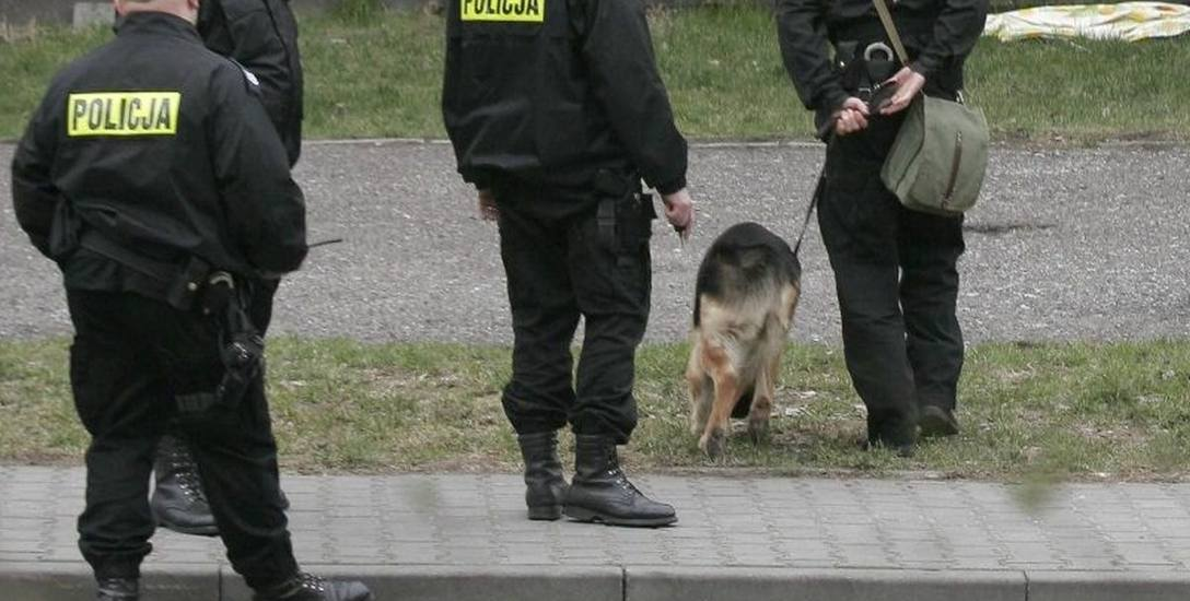 Do poszukiwań zaginionych angażowanych jest wielu policjantów.