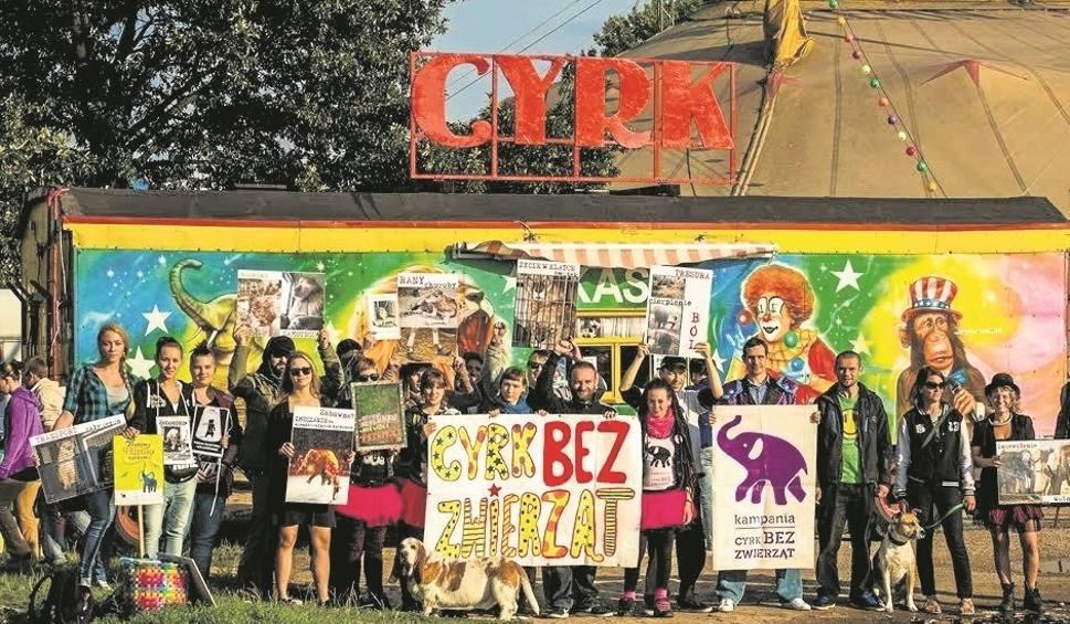 Film do artykułu: Zakaz cyrków ze zwierzętami w Szczecinie? Radni nie składają broni